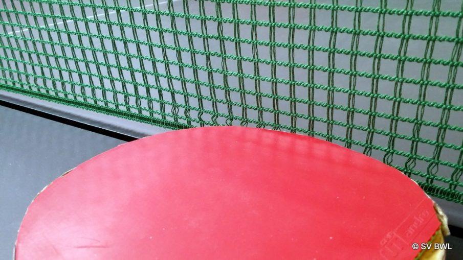 Tischtennisnetz mit Schläger